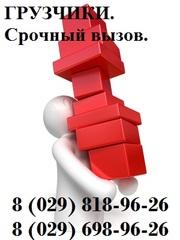 Грузчики - услуги грузчиков – Минск. 35 тыс. час. Грузоперевозки!