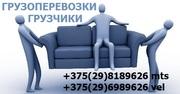 Грузчики Минск недорого. Грузоперевозки. 35 тыс. час.