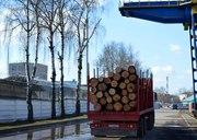 Аренда сортиментовоза в Минске г/п до 31 тонны