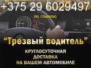 трезвый водитель - Гомель